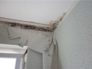 судебная строительно-технической экспертиза ремонта квартиры